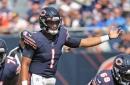 Just-in: Fields named starter, Bears interesting again