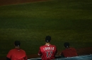 Lovullo: Developing young players 'right in my wheelhouse'