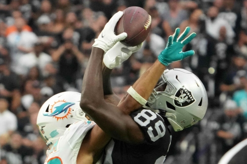 Gamecocks in the NFL: Week 3