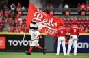 Know Your Enemy: Cincinnati Reds