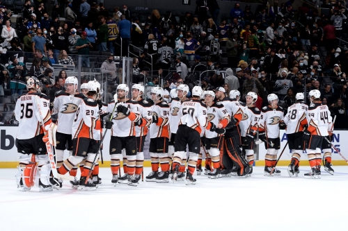 Anaheim Ducks Season Preview: A Calder contender consolation prize