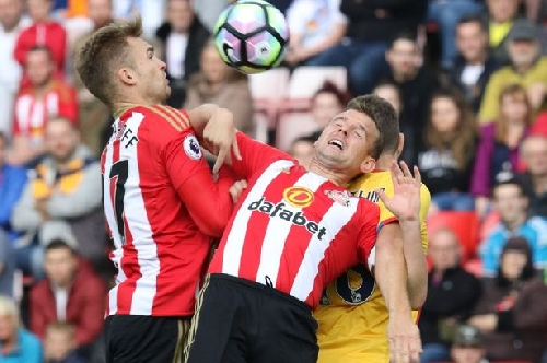 Sunderland's Lee Cattermole blow: Who should replace key man in Black Cats midfield?
