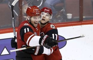 Hanzal could stabilize Coyotes up the middle