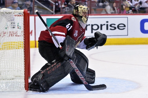 Arizona Coyotes face the scorching Columbus Blue Jackets on the road