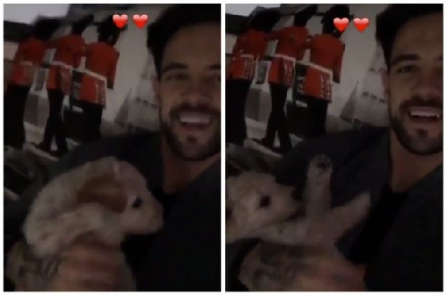 Liverpool striker Danny Ings shows off one of his new Groodle pups on Instagram