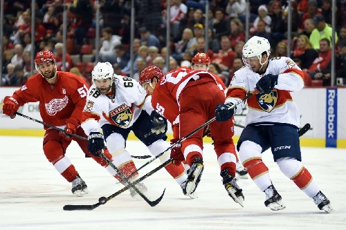 Game Day Updates: Red Wings at Panthers Line Combinations, Keys to the Game, Fun Facts