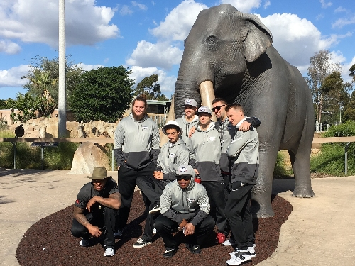 Before their final practice, Washington State takes a Christmas Day trip to the San Diego Zoo