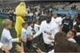 Stoke City transfer gossip: Stoke put off by Lassana Diarra's...
