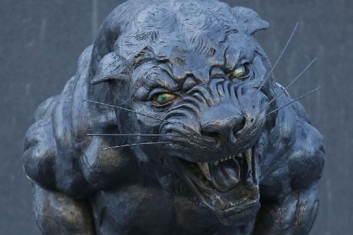 The Scratching Post: Carolina Panthers News 1/9/17
