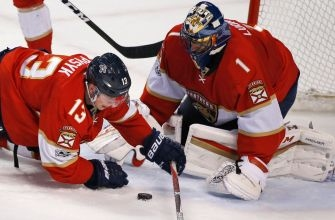 Roberto Luongo can't stop Islanders win over Panthers