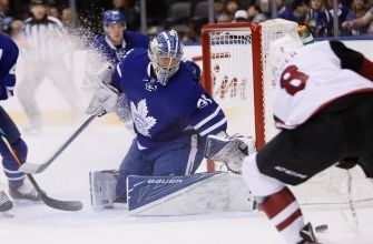 Toronto Maple Leafs: Backup Problem Solved