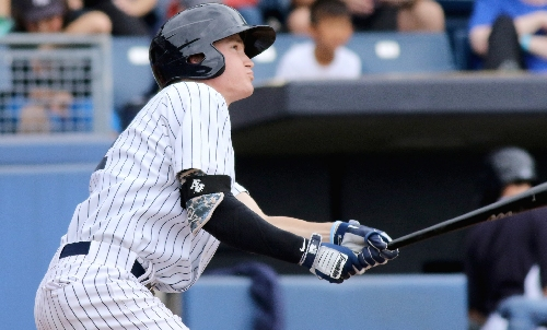 This Yankees shortstop has best glove in minors, report says