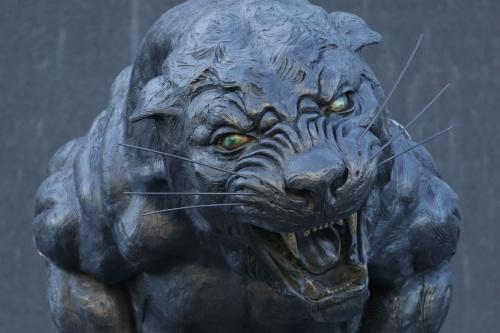 The Scratching Post: Carolina Panthers News 1/21/17