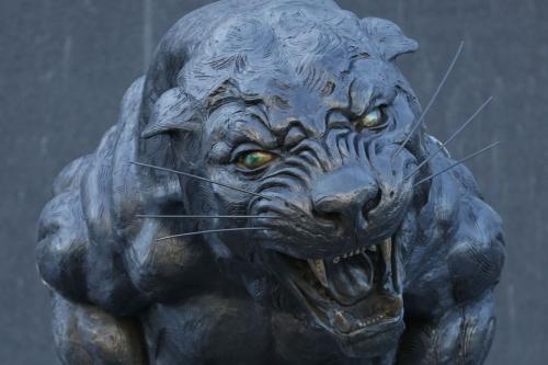 The Scratching Post: Carolina Panthers News 1/22/17