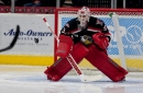 Jimmy Howard leaves Griffins game midway through third period