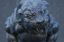 The Scratching Post: Carolina Panthers News 2/11/17
