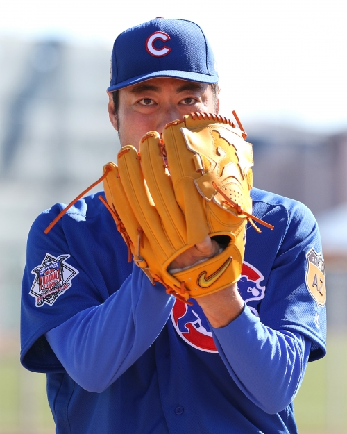 Take a look inside the Cubs' first week of spring training
