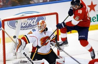 Panthers struggled to Chad Johnson in lost of Flames