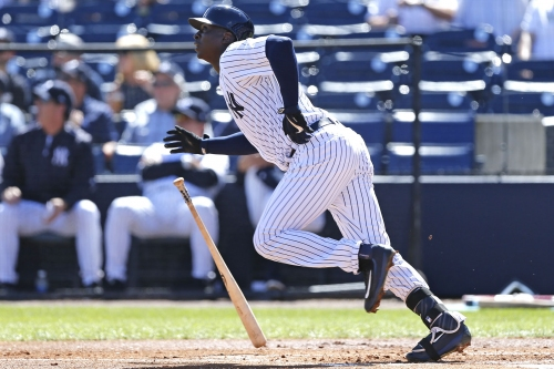 Amidst Yankees' prospect craze, don't forget about Didi Gregorius