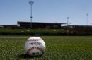 Colorado Rockies vs. Arizona Diamondbacks: spring training opener game thread