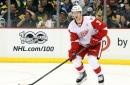 Red Wings Extend Nick Jensen