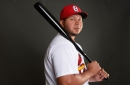 2017 VEB Community Projections: Jhonny Peralta