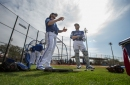 Jays catcher Martin pitches in for Canada: DiManno