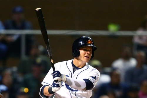 Tampa Bay Rays News and Links - Rays Prospects Mash Homers