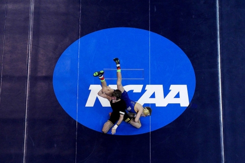 IOWA HAWKEYES WRESTLING 2017: A Look Back