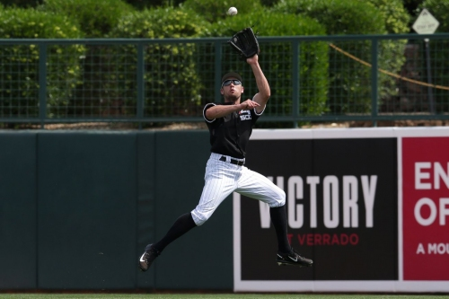Fun with White Sox Catch Probability