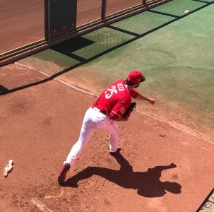 Goodyear journal 3/21 – Reed dominant