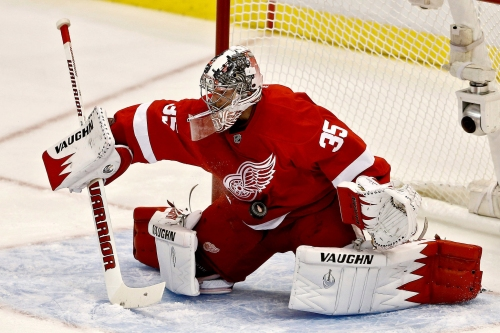 Red Wings' Jimmy Howard 'as good as maybe he's ever been'