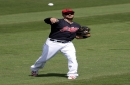 Cleveland Indians outfielder Lonnie Chisenhall suffers shoulder injury