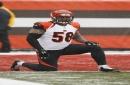 Bengals release 8-year veteran LB Rey Maualuga The Associated Press