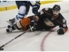 Ducks Notes: Nate Thompson fitting right back in after long injury layoff