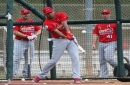 Lessons of spring for the Cardinals