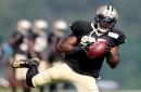 New Orleans Saints bringing back safety Rafael Bush
