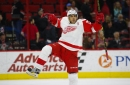The Next 18 Months - The Red Wings' Road Back - Part 3