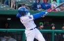 Chicago Cubs Minor League Wrap: April 21