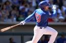 Chicago Cubs Minor League Wrap: April 22