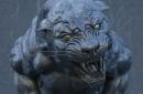 The Scratching Post: Carolina Panthers News 4/23/17