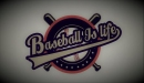Baseball Is Life: Shut Up and Cheer