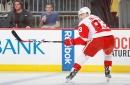 Detroit Red Wings 2016-17 Player Grades: Tomas Nosek
