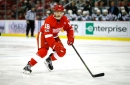 Detroit Red Wings 2016-17 Player Grades: Robbie Russo