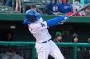 Chicago Cubs Minor League Wrap: April 25
