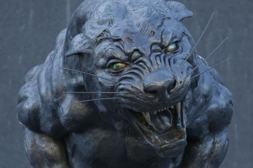 The Scratching Post: Carolina Panthers News 5/20/17