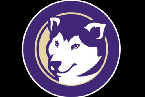 Super Dawgs: Husky softball eliminates Michigan 4-2, advances to Super Regional