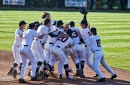 American Athletic Conference Baseball Tournament Preview