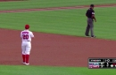 Just move, Alan Porter: Nationals' second baseman Daniel Murphy gets cursed at by umpire...