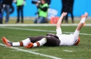 A Cleveland Browns fan made quite the Brian Hoyer video
